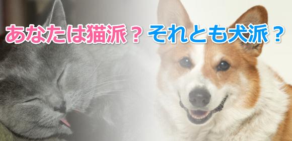 あなたは猫派?それとも犬派?日本での飼育割合はどのくらい?