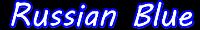 ロシアンブルーの飼い方と厳選キャットフードの口コミブログ!